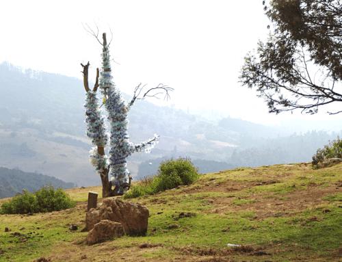 Plastikbaum in der Teeregion von Ooty